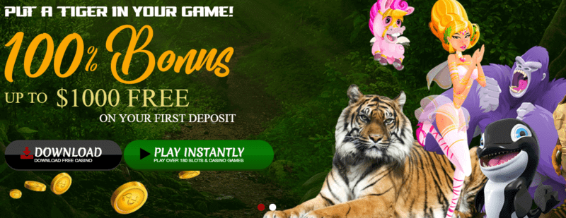888 tiger casino bonuses